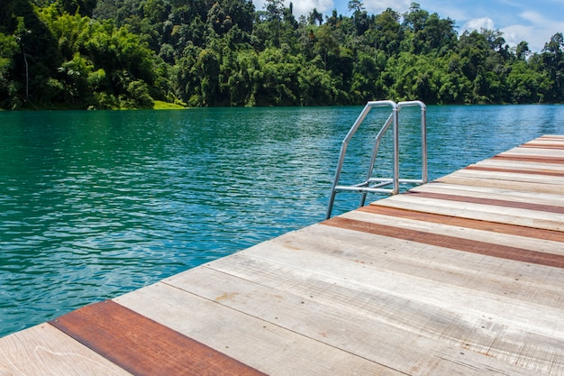 Barre d'échelles dans les attractions naturelles des forêts et des rivières du lac dans le barrage ratchaprapha au parc national de khao sok