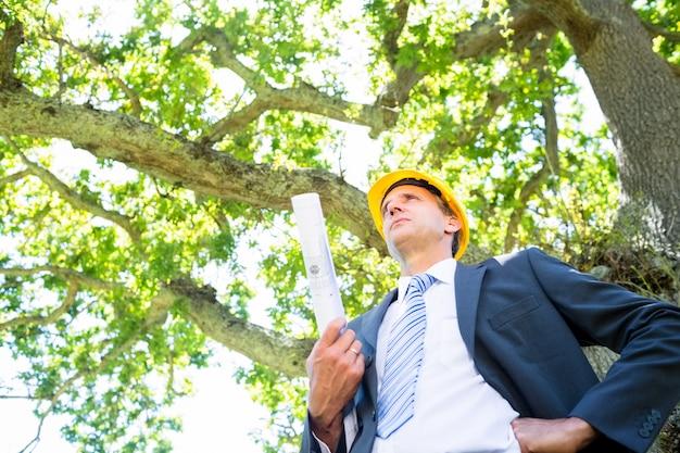 Bas affichage angle, de, confiant, mâle, architecte, tenue, plan, contre, arbre