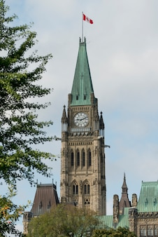 Bas affichage angle, de, tour paix, parlement, bâtiment, colline parlement, ottawa, ontario, canada