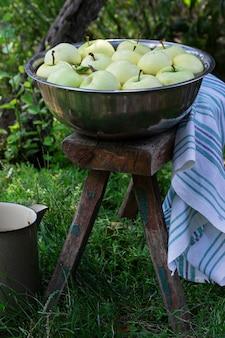 Un bassin avec de l'eau et des pommes sur le fond d'un jardin d'été.