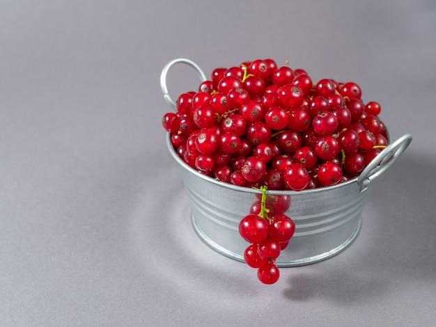 Un bassin en métal rempli de groseilles rouges.
