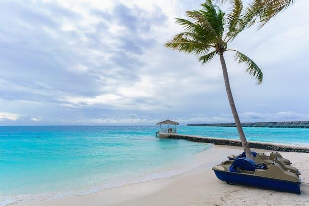 Bateaux à aubes pour touristes pour la direction sur la mer turquoise cristalline dans l'île des maldives