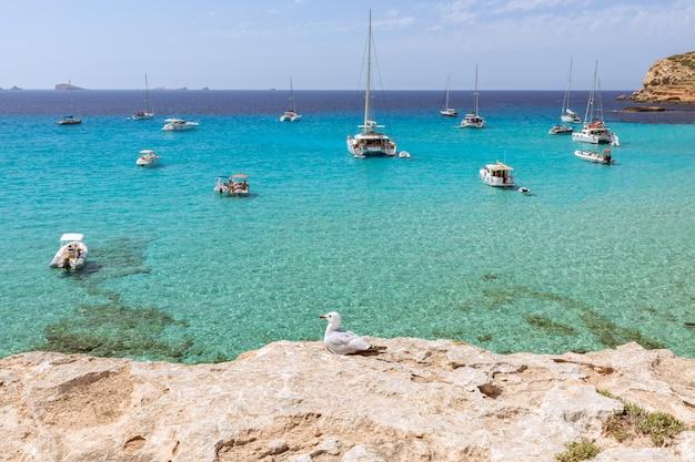 Bateaux de plaisance marins de la côte cala comte, plage cala escondida