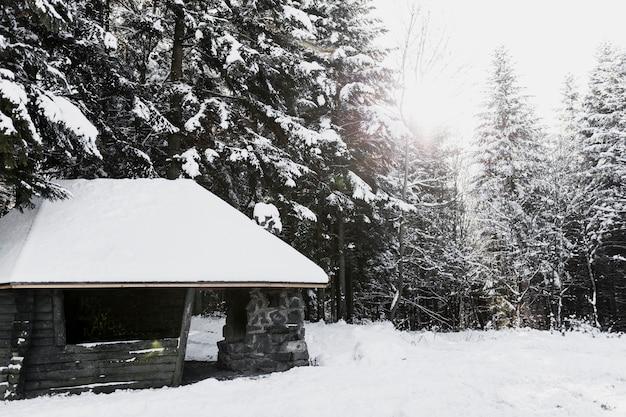 Bâtiment en bois dans la forêt d'hiver