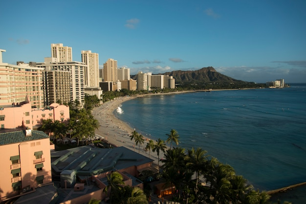 Bâtiments le long de la plage, waikiki, honolulu, oahu, hawaii, états-unis