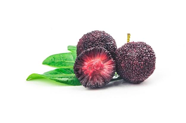 Bayberry frais sur fond blanc