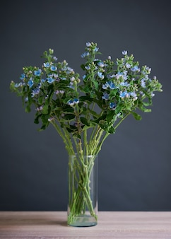 Beau bouquet de fleurs bleues dans un vase en verre transparent.