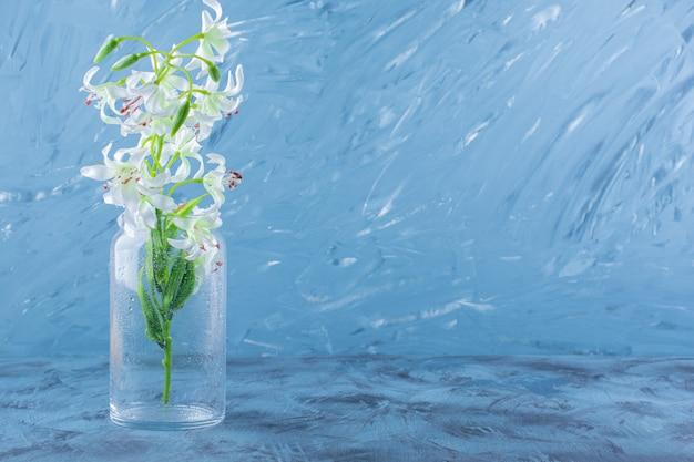 Beau bouquet de fleurs de lys dans un vase en verre bleu.