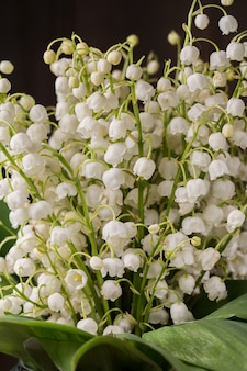 Un beau bouquet de fleurs de muguet.