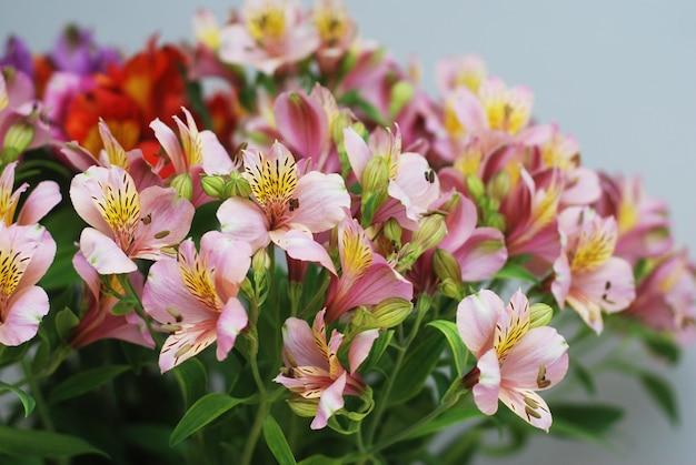 Beau bouquet de fleurs printanières roses.