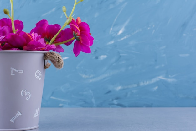 Beau bouquet de fleurs violettes fraîches sur bleu.