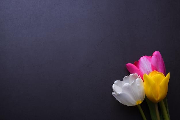 Un beau bouquet lumineux de tulipes multicolores en gros plan contre un mur de stuc gris foncé.