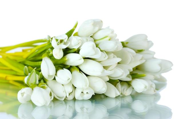 Beau bouquet de perce-neige isolé sur blanc