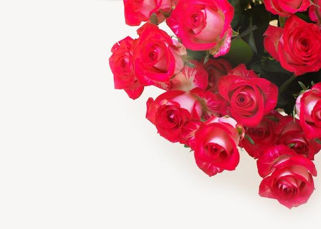 Beau bouquet de roses rouges sur fond clair