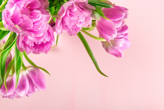 Beau bouquet de tulipes de style pivoine pourpre