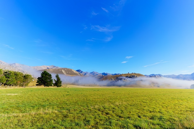 Beau brouillard couvrant castle hill le matin, entre darfield et arthur's pass, île du sud de la nouvelle-zélande