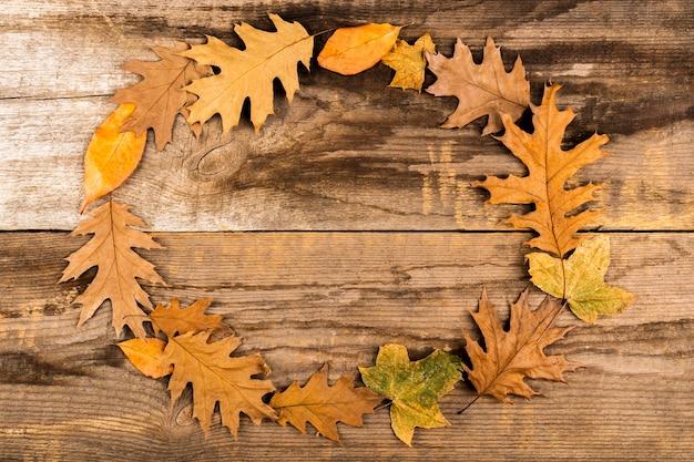 Beau cadre de feuilles d'automne