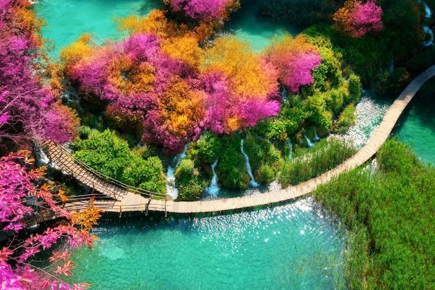 Beau chemin en bois dans le lac plitvice, croatie.