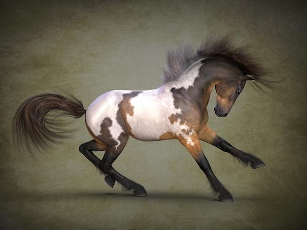 Beau cheval tacheté visualisation 3d