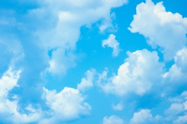 Beau ciel au bord de la mer avec fond de nature mouettes