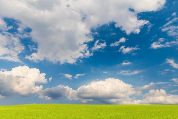 Beau ciel bleu et champ vert, fond de paysage naturel