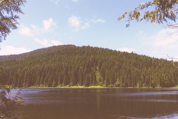 Beau cliché d'un lac avec et montagne de forêt