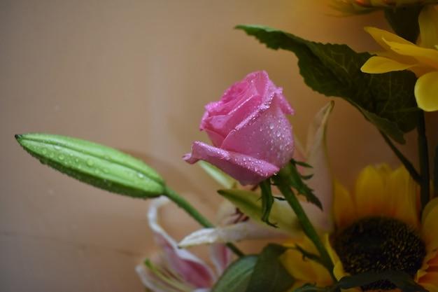 Beau concept avec des fleurs de roses colorées