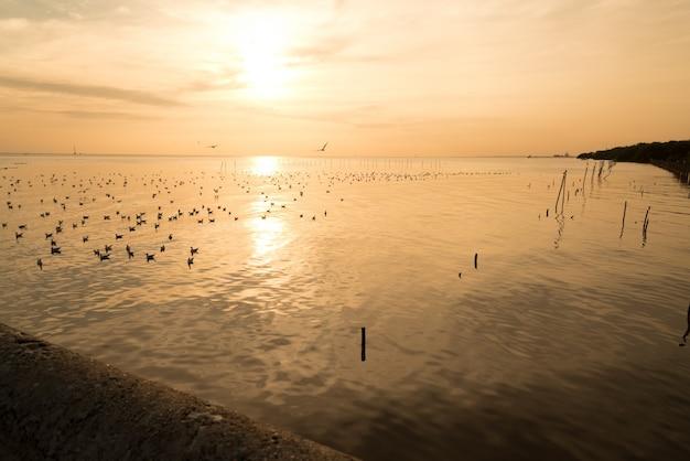 Beau coucher de soleil au dessus de la mer