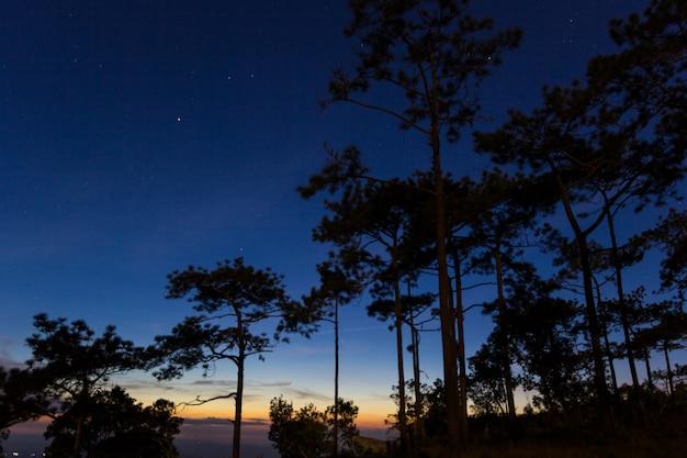 Beau coucher de soleil au parc national de phukradung, loei, thaïlande