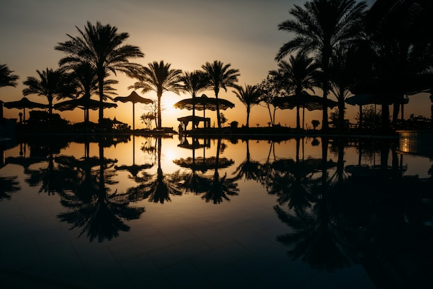 Beau coucher de soleil dans une station balnéaire sous les tropiques avec des palmiers et de l'eau