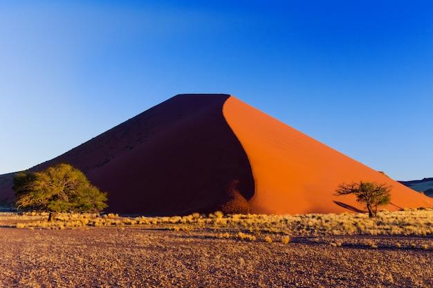 Beau coucher de soleil sur les dunes et la nature du désert du namib, sossusvlei, namibie, afrique du sud