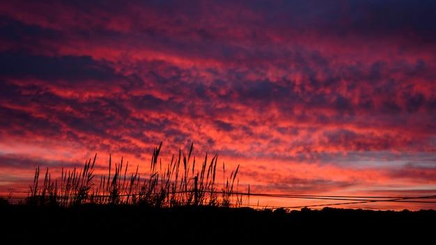 Beau coucher de soleil rouge depuis une terrasse