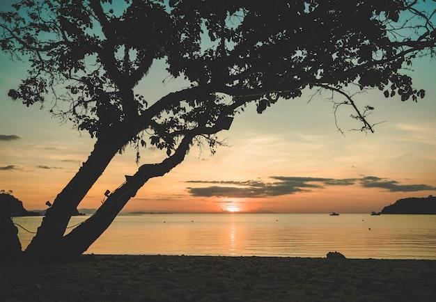 Beau coucher de soleil tropical calme sur la plage de bouteille