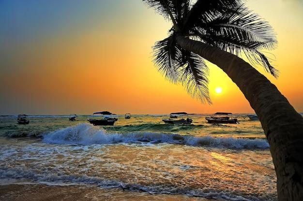 Beau coucher de soleil tropical avec palmiers et bateau