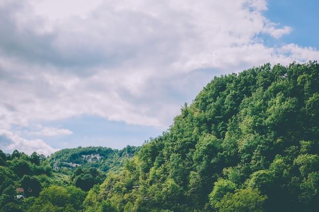 Beau coup de collines boisées sous un ciel nuageux