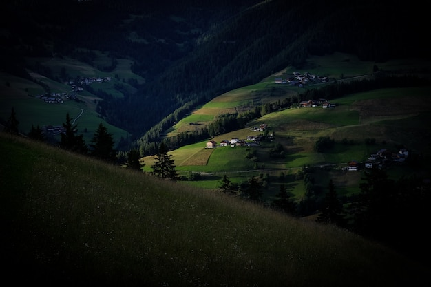Beau coup de collines herbeuses près de champs herbeux avec des arbres et des bâtiments au loin