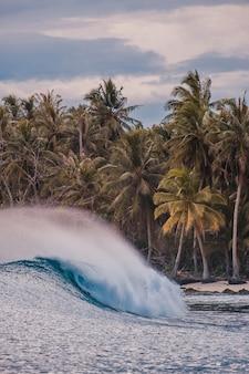 Beau coup de vague déferlante avec les arbres tropicaux sur une plage