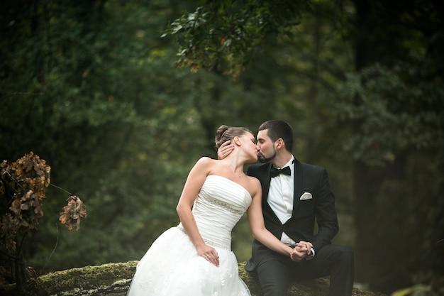Beau couple de mariage assis dans les bois sur un arbre tombé