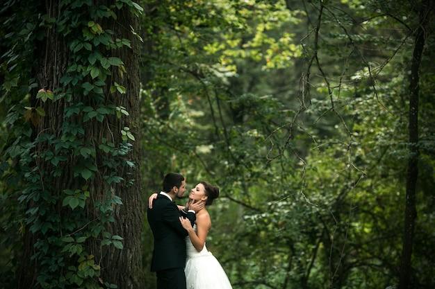 Beau couple de mariage posant dans la forêt