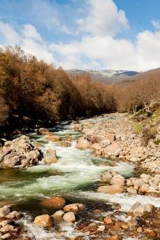 Beau cours d'une rivière en bas