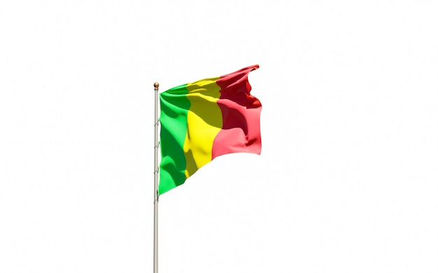 Beau drapeau national du mali