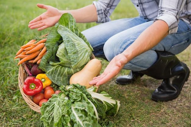 Beau fermier avec panier de légumes sur une journée ensoleillée