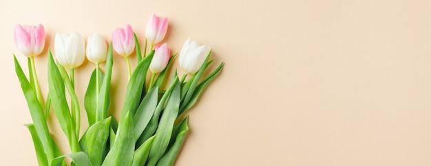 Beau fond avec des fleurs printanières sur pastel. concept de printemps