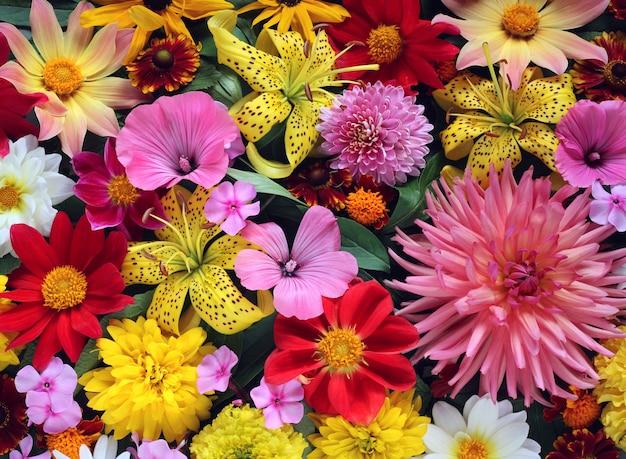 Beau fond floral, vue de dessus.