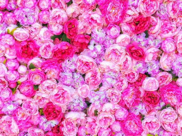 Beau fond de pivoines roses.