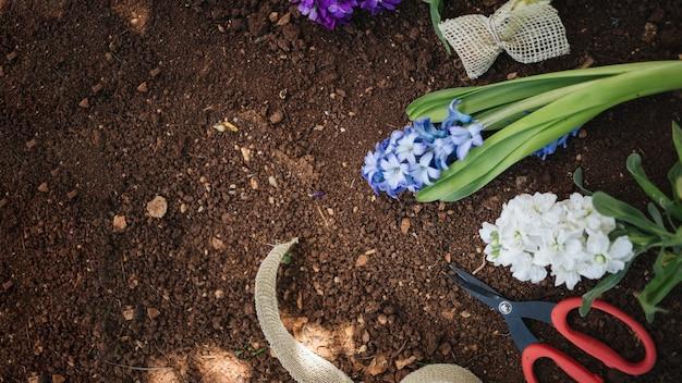 Beau fond pour les concepts de jardinage