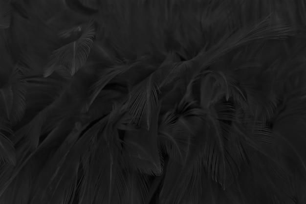 Beau fond de texture de motif de plumes d'oiseau gris noir.