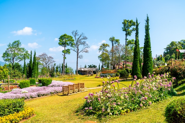 Beau jardin parc sur la montagne à chiang mai, thaïlande