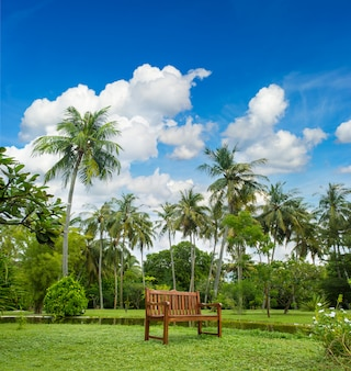 Beau jardin tropical avec palmiers