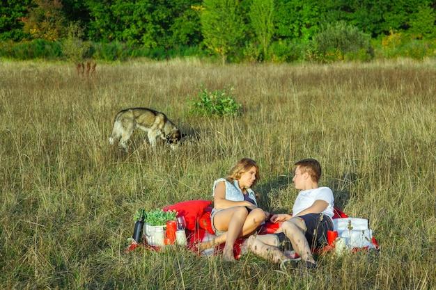 Beau jeune couple d'amoureux heureux en pique-nique allongé sur un plaid avec leur chien dans le champ par une journée d'été ensoleillée, profitant et se reposant. se regardant en souriant.